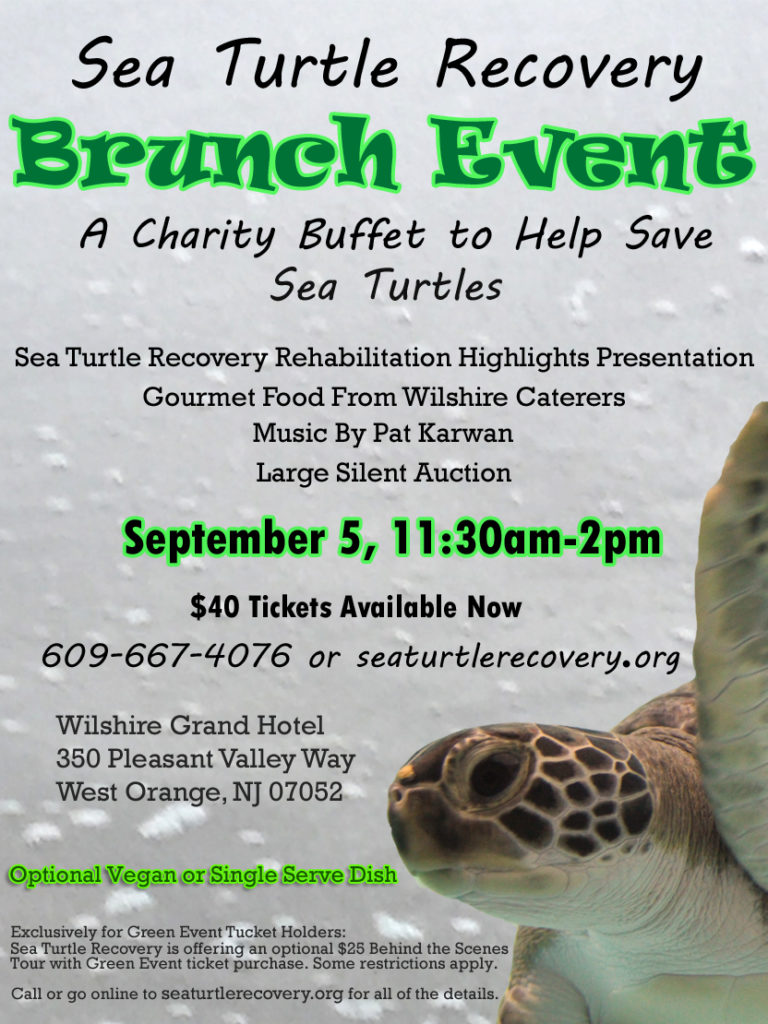 Sea Turtle Recovery Brunch Fundraiser